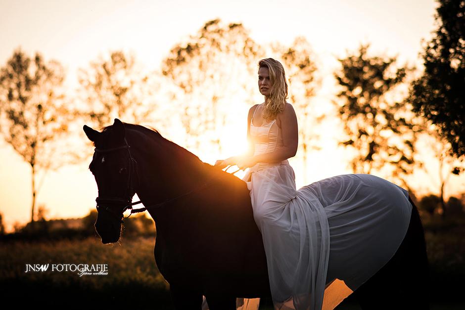 paarden-Portret-1